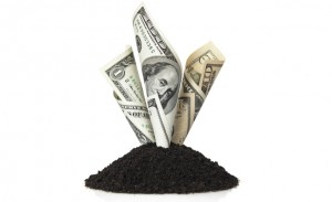 Save Your Money by Screening Your Own Topsoil