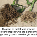 Benefits Of Screening Your Own Topsoil